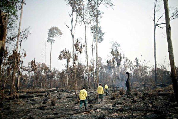 I membri dei vigili del fuoco controllano i focolai nella foresta Amazzonica vicino a Apui, Stato Amazonas, Brasile 11 agosto 2020. REUTERSUeslei MarcelinoFile Photo.jpg